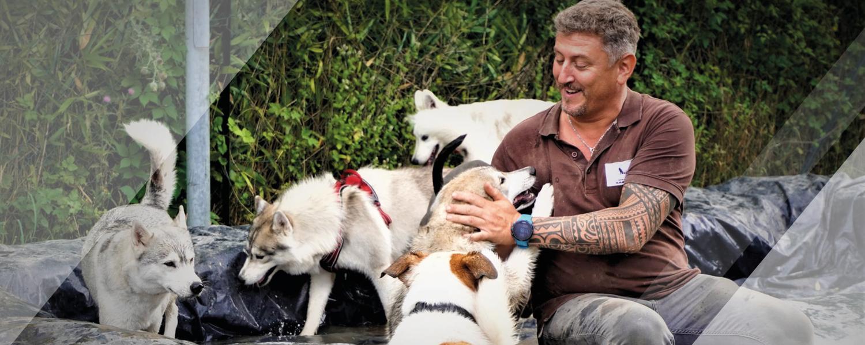 au coeur des chiens angoulême centre canin canijeux balades expositions canines